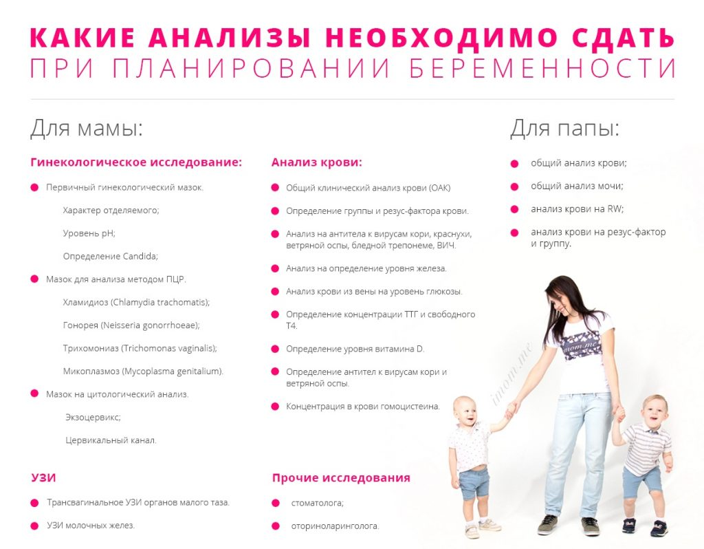 список анализов перед зачатием