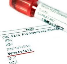 hct в анализе крови