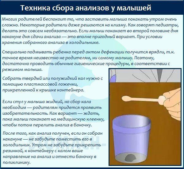 правила сбора кала для анализа