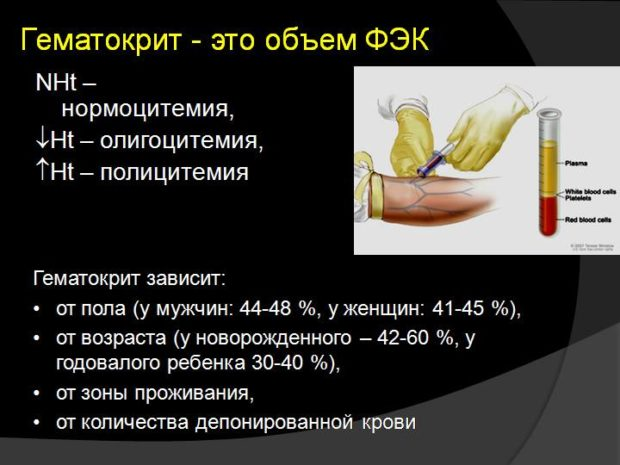 общие сведения о гематокрита