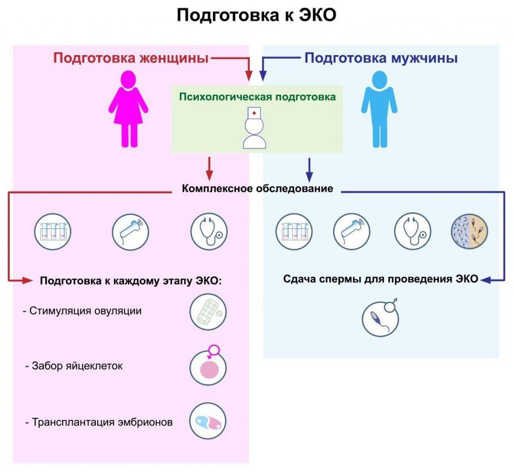 подготовка к ЭКО мужчины и женщины