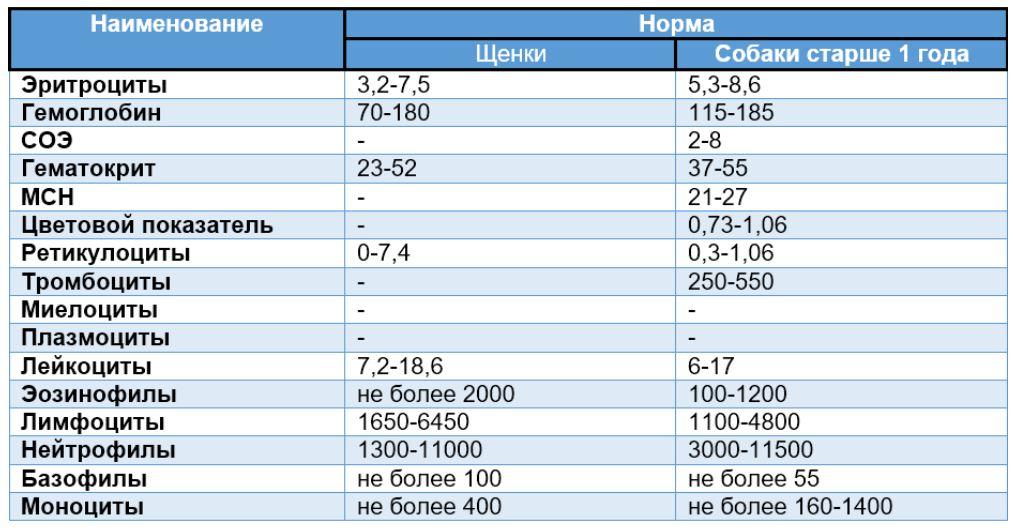 показатели общего анализа крови у собаки