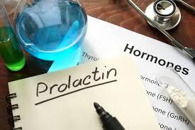 анализ на пролактин и его особенность