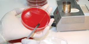 сдача анализа крови