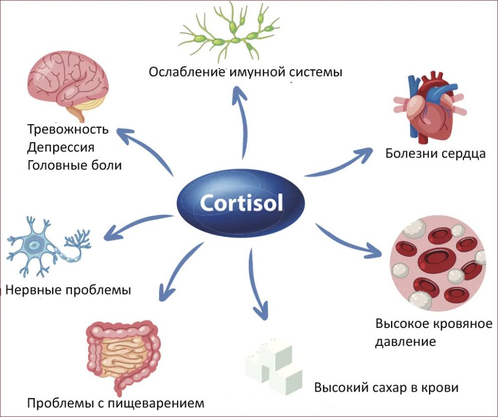 отклонение нормы кортизола в крови