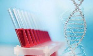 антитела и их анализ