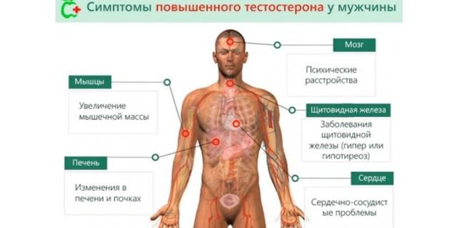 симптомы высокого уровня тестостерона
