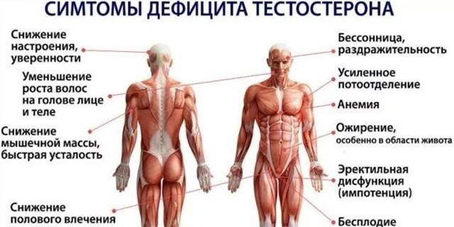 симптомы низкого уровня тестостерона