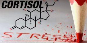 гормон стресса - кортизол