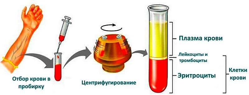 гематокрит в анализе крови и его получение