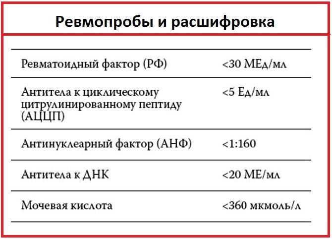 ревмофактор анализ крови и его значение