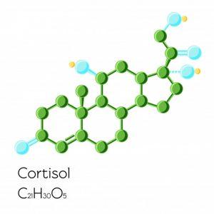 химическая формула кортизола