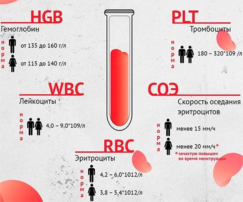 показатели анализа крови