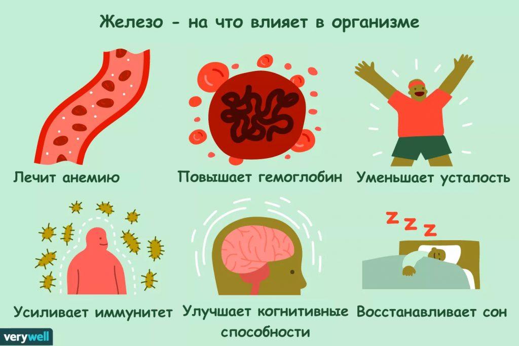 необходимость железа в крови