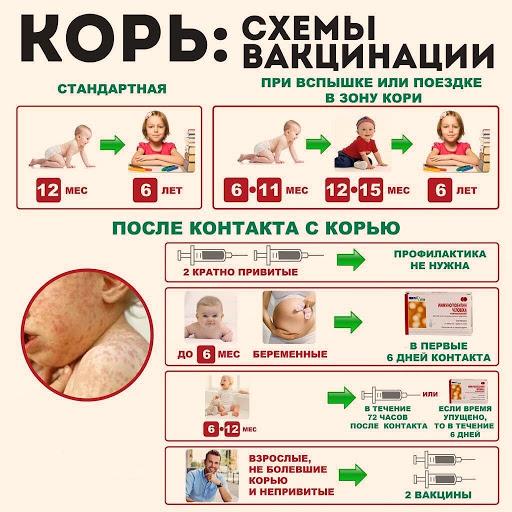 схема вакцинации от кори