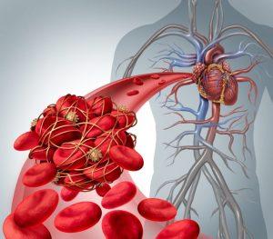 движение крови в организме